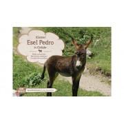 Don Bosco Bildkarten: Kleiner Esel Pedro in Gefahr