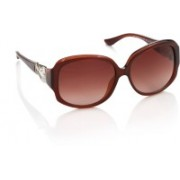 Moschino Over-sized Sunglasses(Brown)