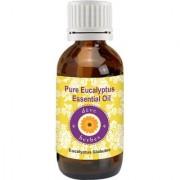 Pure Eucalyptus Essential Oil 50ml (Eucalyptus Globules) 100 Natural