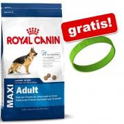 Pachet mare Royal Canin Size/Breed + o brățară I Love My Dog gratis! - Maxi Adult Sterilised (12 kg)