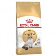 Royal Canin Breed -5% Rabat dla nowych klientówRoyal Canin Breed Ragdoll Adult - 10 kg Darmowa Dostawa od 89 zł i Promocje urodzinowe!