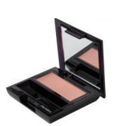 Shiseido Luminiz.Eye Color Pk319 Peach