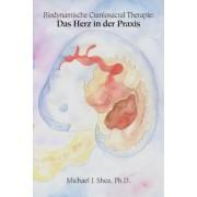 Biodynamische Craniosacral Therapie: Biodynamische Craniosacral Therapie: Das Herz in Der Praxis (German), Paperback