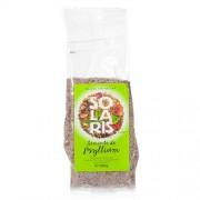 Seminte de Psyllium 100g Solaris