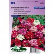 Verbena zaden Ideal Florist Mix ijzerhard