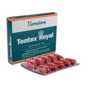 Tentex Royal 10 cps Himalaya
