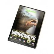 Korda Underwater Part 6