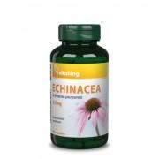 Vitaking Bíbor kasvirág (Echinacea) kivonat 90db
