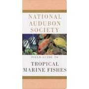 National Audubon Society Field Guide to Tropical Marine Fishes: Caribbean, Gulf of Mexico, Florida, Bahamas, Bermuda, Paperback