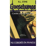 Nu coboriti in pivnita!/Robert Lawrence Stine