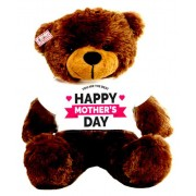 2 feet big brown teddy bear wearing YOU ARE THE BEST Happy Mothers Day T-shirt
