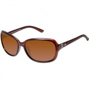 David Blake Brown Polarized UV Protected Oval Sunglass