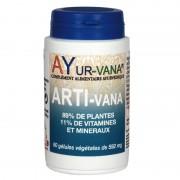 Arti-Vana bien-être articulaire - 60 gelules
