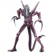 17CM extranjero Vs Depredador Figura acción - Púrpura