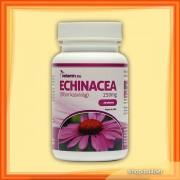 Echinacea 250 mg (30 kap.)