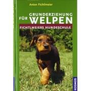 Anton Fichtlmeier - Grunderziehung für Welpen: Fichtlmeiers Hundeschule - Preis vom 18.10.2020 04:52:00 h