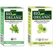 Amla Powder And Brahmi Powder For Hair An Effective Treatment Of Dandruff
