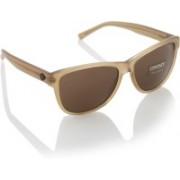 DKNY Round Sunglasses