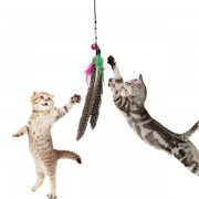 Meco Pet Cat Toy Feather Teaser Plastic Wand Toy Teasers With Bell For Cat Play Fun