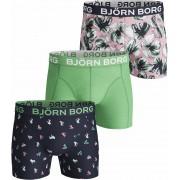 Björn Borg Shorts Peacoat 3er-Pack - Grün XL