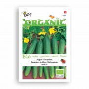 Buzzy Bio Organic Buzzy® Organic Augurk Profi F1 (BIO)