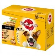 Pedigree -5% Rabat dla nowych klientówMegapakiet Pedigree Saszetki, 48 x 100 g - w galarecie Niespodzianka - Urodzinowy Superbox! Darmowa Dostawa od 89 zł i Promocje urodzinowe!