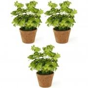 Bellatio flowers & plants 3x Groene kunstplanten klaverzuring planten in pot 25 cm - Kunstplanten
