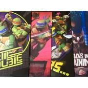 Teenage Mutant Ninja Turtle 4 Folder Set ~ Turtle Trouble, We Are Heroes, Straight from the Sewer, Ninjas in Training