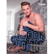 Calendar 2018 Falcon Calendars
