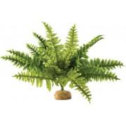 Exo Terra Boston Fern (páfrány) műnövény - M - 32 cm
