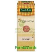 Polygemma Nr.1 Stomac 50 ml Plantextrakt