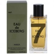 Iceberg Eau de Iceberg Amber Eau de Toilette para homens 100 ml