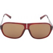 Calvin Klein Rectangular Sunglasses(Brown)