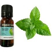 Shagun Gold Peppermint Oil 15 Ml 100 Natural Ideal For Use In Aromatherapy For Skin Muscles Use In Aroma Diffusers To