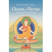 Ocean of Nectar: The True Nature of Things, Paperback/Geshe Kelsang Gyatso