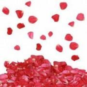 Confetti petale de trandafir rosii tun 80 cm decoratiuni petreceri
