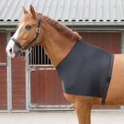 Harrys Horse Harry's Horse Borstbeschermer Lycra