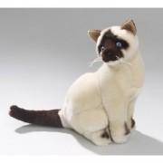 Pluche katten knuffel Siamese kat 26 cm