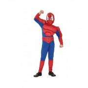 Disfraz Spider Musculoso Infantil - EuroDisfraces