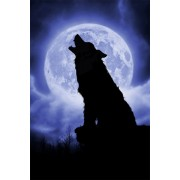 Puzzle Schmidt - Julie Fain: Noapte cu luna plina, 500 piese (59514)