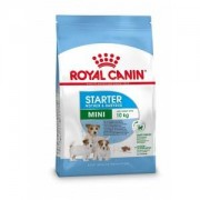 Royal Canin Mini Starter Mother & Babydog pour chiot 3 kg
