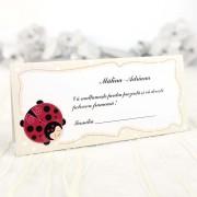 Mapă de bani & Card de masă cu gargarite cod 7501