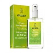 Weleda - Citrus Deodorant (100 ml)