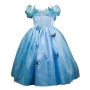 Domiray Blue Cinderella Princess Butteryfly Dress Costume