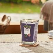 Lumanare parfumata Yankee Candle elevation collection fig clove Borcan mare