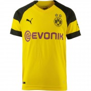 Puma Koszulka funkcyjna 'Borussia Dortmund'