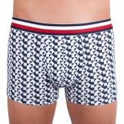 Tommy Hilfiger Pánské boxerky Tommy Hilfiger vícebarevné (UM0UM00794 100) M