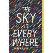 The Sky Is Everywhere, Paperback
