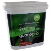 PROTECTA Engrais Naturel Guano pro Chauve-souris - 3 Kg