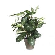Planta artificiala, Cordyline, verde